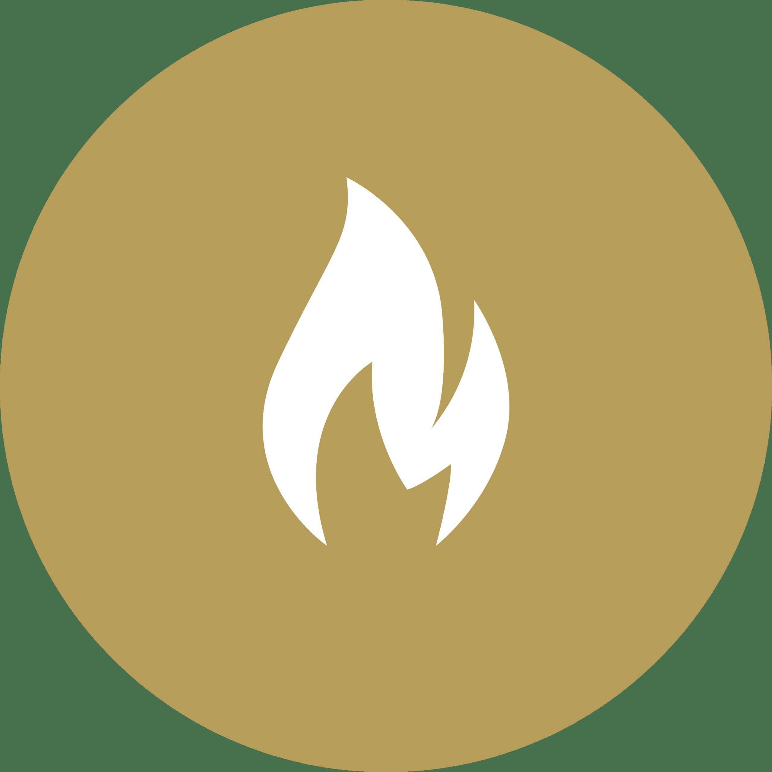 vlam icoon